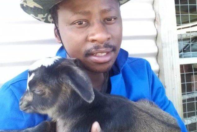 Zenzele Dlomo is improving rural economy